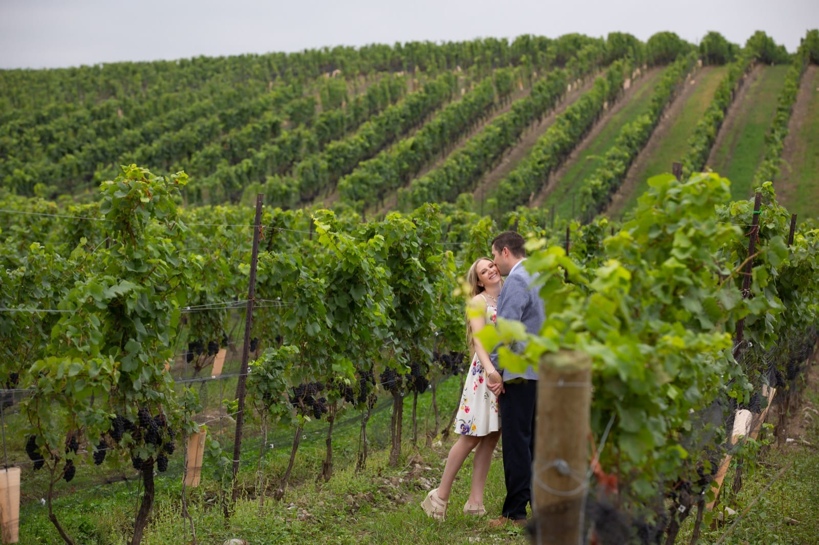Winery Engagement Photography in the Niagara Region